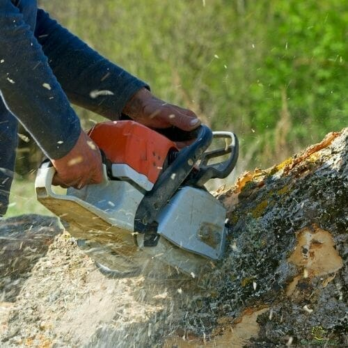 man-machine-stump-cutting-austin